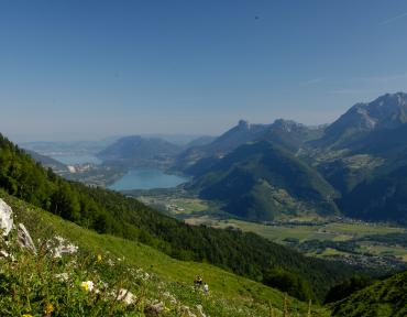 http://www.cms-ot.com/documents/1326/V5/lathuile_charbon_ete_lac_annecy_c.bailly.jpg